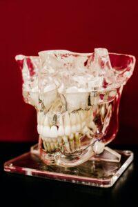 Ile kosztuje wstawienie zęba 1? - Najważniejsze informacje